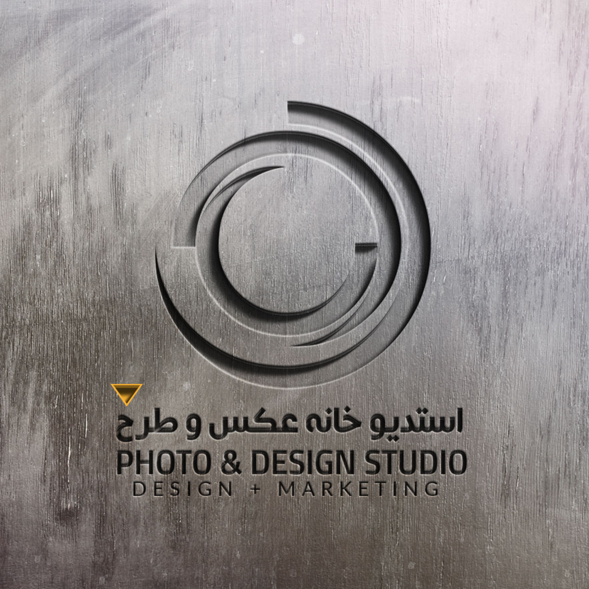 PHOTO & DESIGN studio | PDS™ LOGO